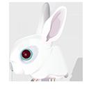 Rabbit zodiac-128
