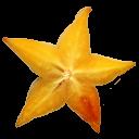 Starfruit-128