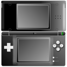 Nintendo DS Black