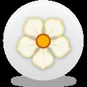 Magnolia-128