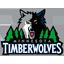 Minnesota Timberwolves-64