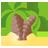 Palm Tree-48