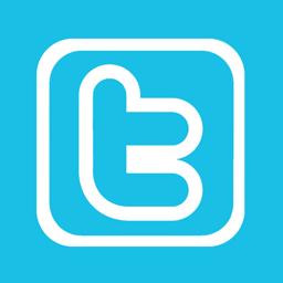 Twitter Alt 1 Metro