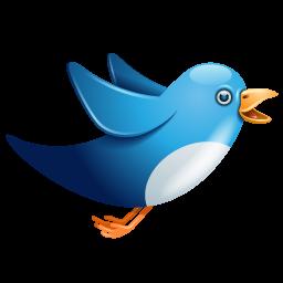 Twitter blue birdie