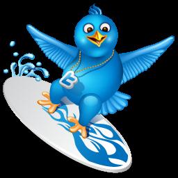 Twitter surfer
