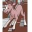 Foal-64