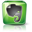 Evernote high detail Icon