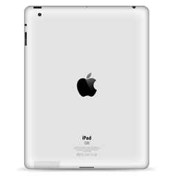 iPad Back Scratch