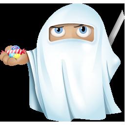 Ninja Ghost