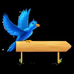 Bird sign sparkles