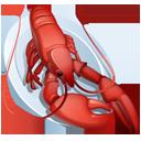 Lobster-128