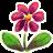 Flower-48