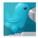 Plastic Twitter Bird-128