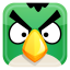 Angry Green Bird icon