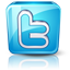 Twitter high detail icon
