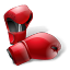 Boxing Gloves-64